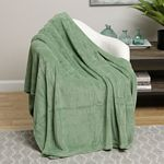 Green Solid Microplush Blanket