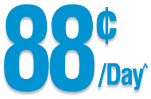 88 cents per day^